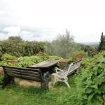 Fotos vom Silencio Training der Yoni Academy in der Toskana im Mai 2010