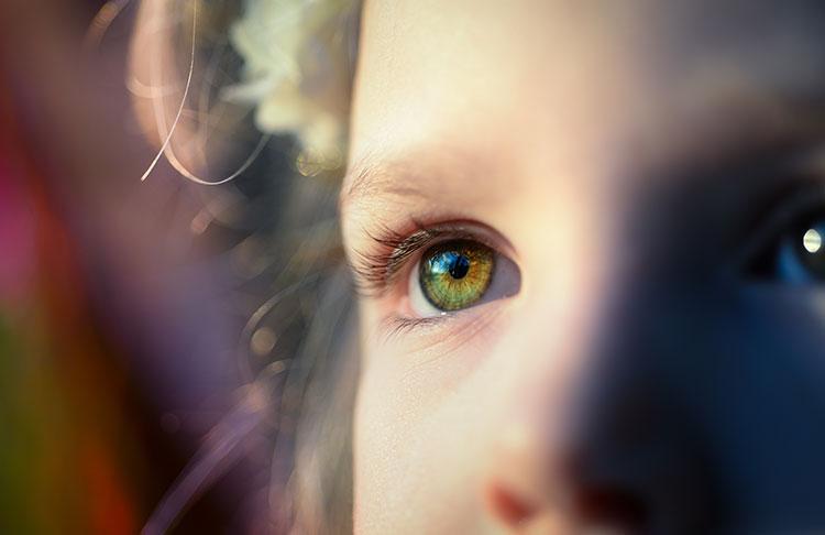 Forschung zu Achtsamkeit und Berührung